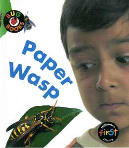 Paper Wasp Cover
